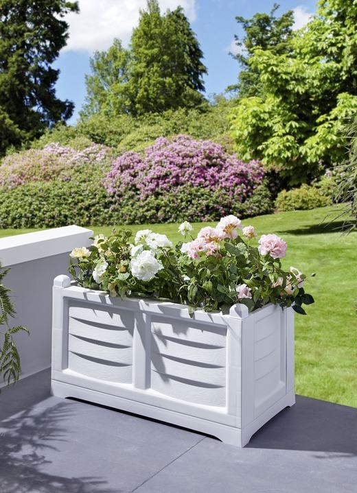 Pflanzkasten in verschiedenen Ausführungen - Blumentöpfe und Pflanzgefäße  Brigitte Hachenburg