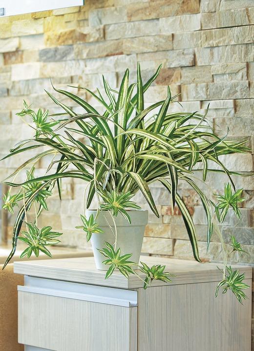 Wasserlilie im Topf - Kunst- & Textilpflanzen  Brigitte Hachenburg