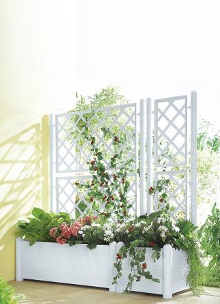 pflanzk bel blument pfe und blumenk sten kaufen brigitte hachenburg. Black Bedroom Furniture Sets. Home Design Ideas