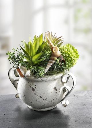 kunstpflanzen textilpflanzen online kaufen brigitte hachenburg. Black Bedroom Furniture Sets. Home Design Ideas